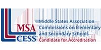 MSA CESS 200